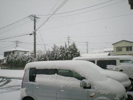 2010.1.13-1.jpg