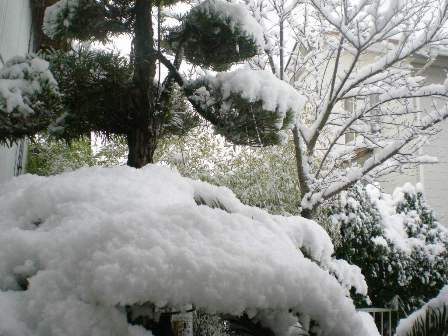 2010.1.13-3.jpg